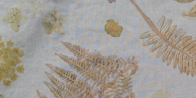 New: Ecology of Craft Programme